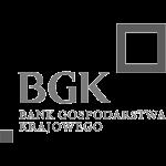 1_BGK