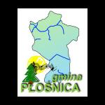 5_plosnica_V3